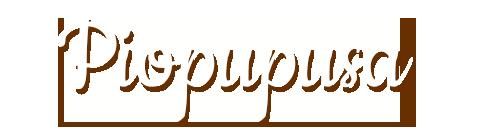 PioPupusa2
